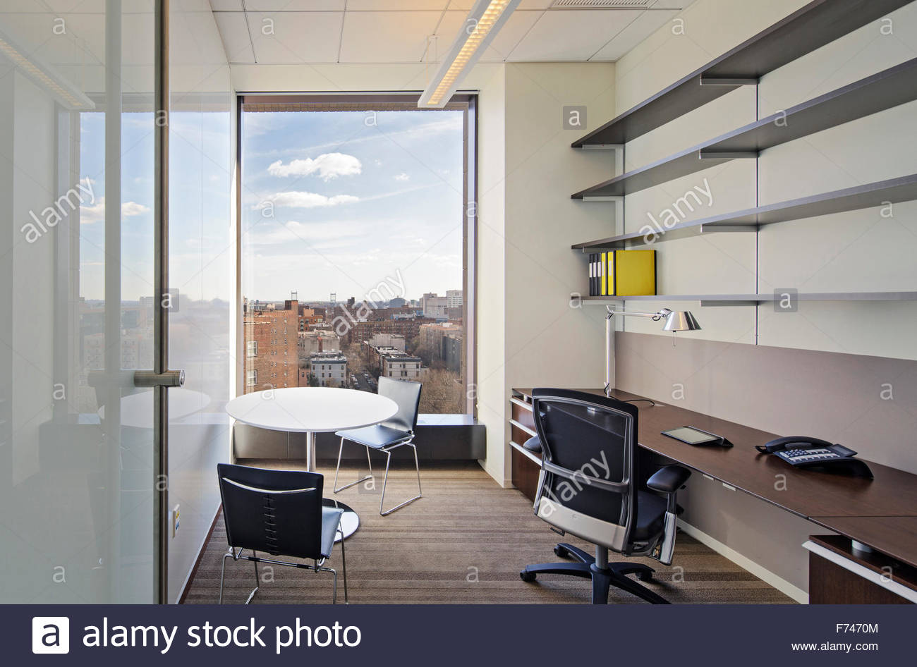 Office Space With City View Mount Sinai School Of Science And Medicine New York State USA