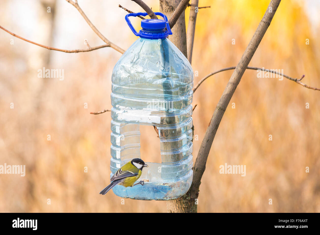 Кормушка для птиц: идеи как сделать 12