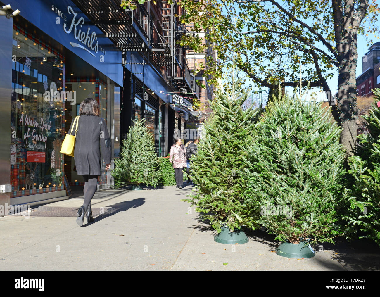 Vendors selling Christmas Trees on the streets of New York Stock ...