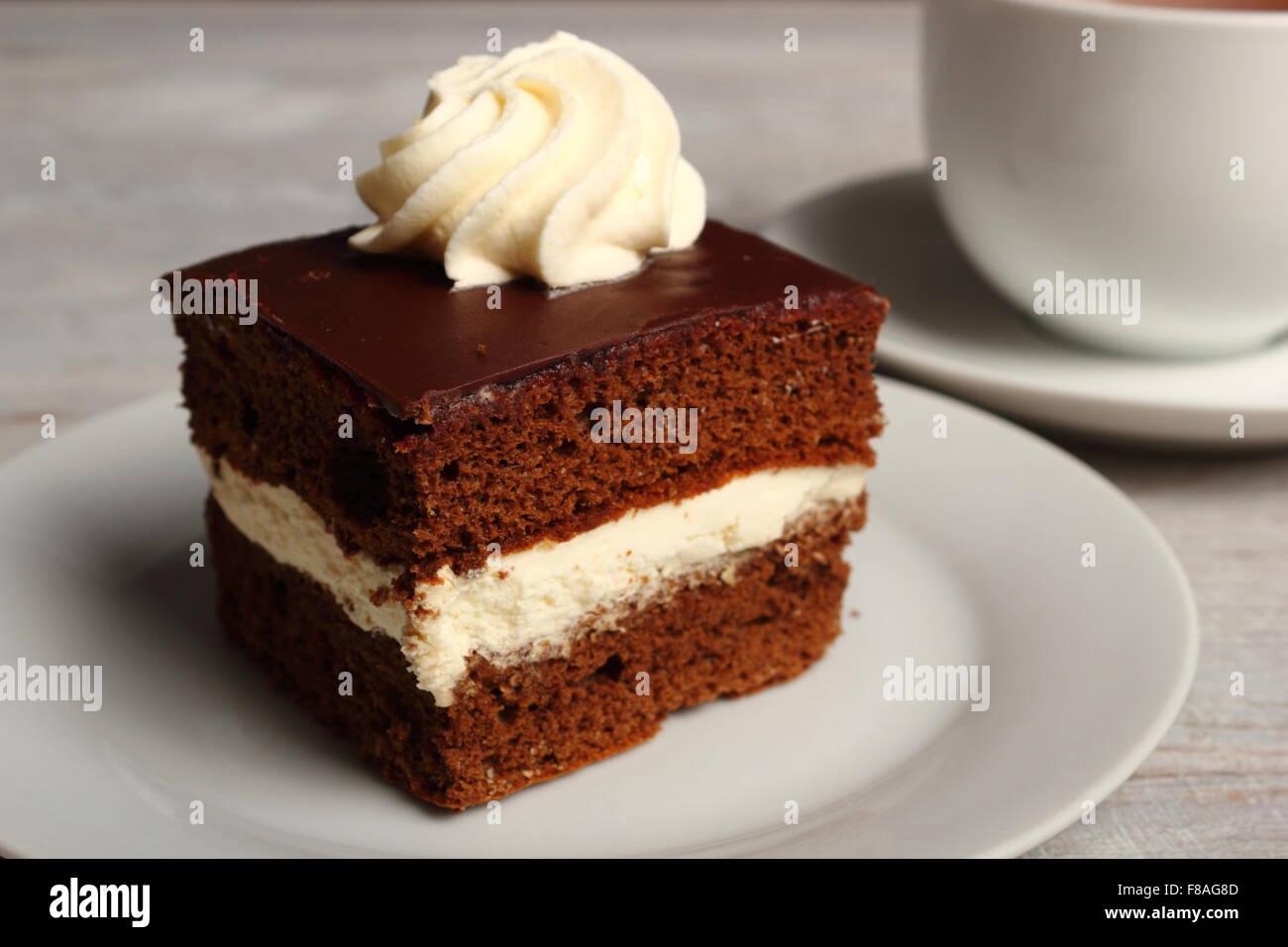 Cream Pie. Chocolate Sponge Cake filled with whipped cream Stock ...