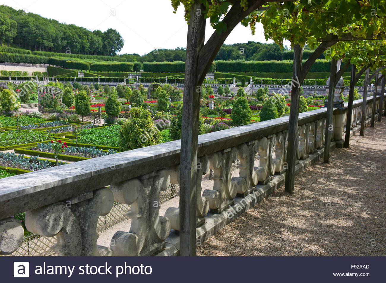 a vine covered terrace overlooking the potager garden at chateau de stock photo royalty free. Black Bedroom Furniture Sets. Home Design Ideas