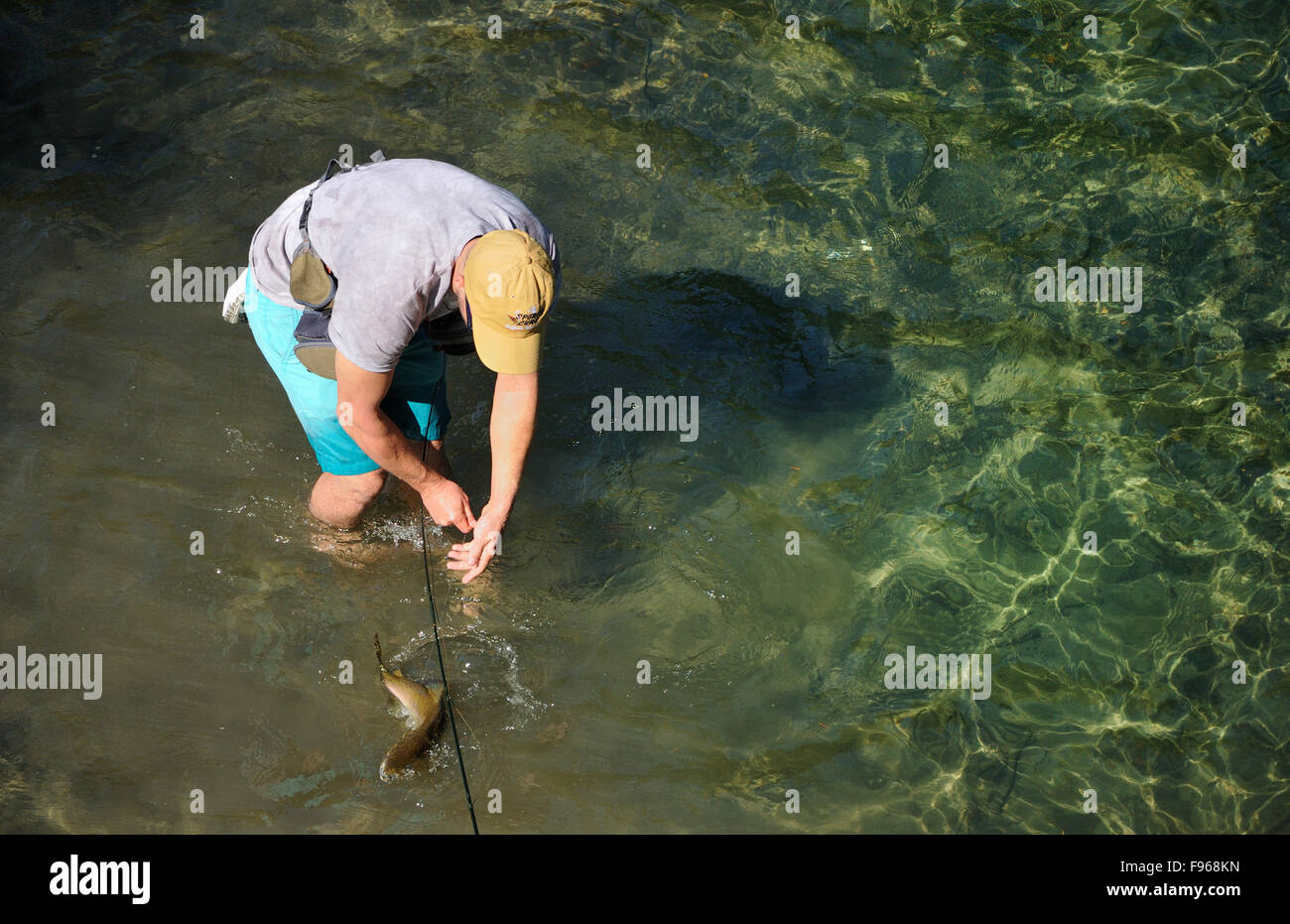 Man Fishing The Campbell River, British Columbia Canada