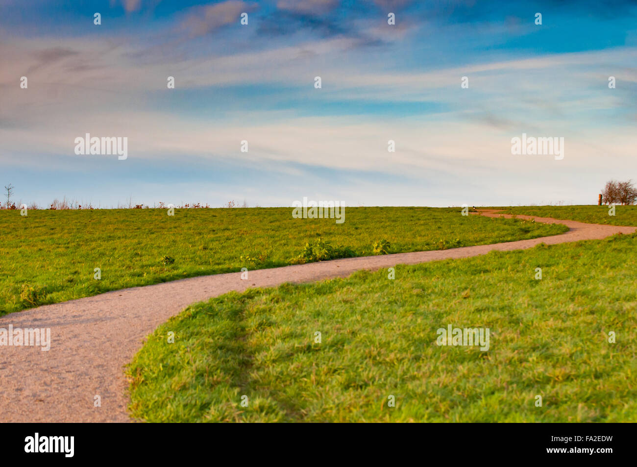 Winding path through a grassy field in a nature reserve stock photo winding path through a grassy field in a nature reserve voltagebd Images