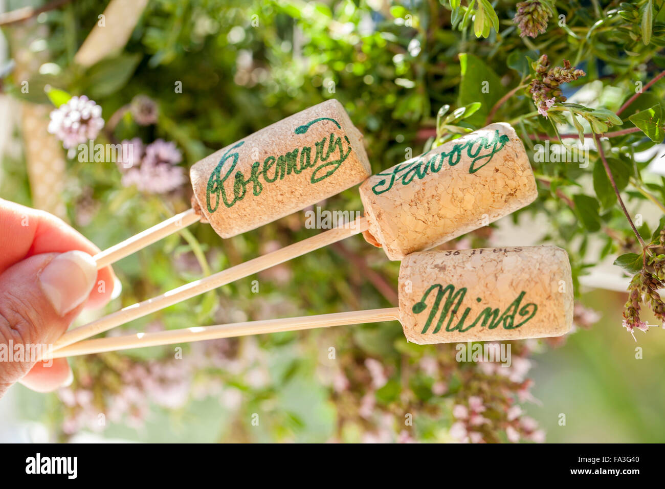 Ornaments with names on them - Method Paint The Cans White And Ornaments With String Write The Names Of Herbs On The Cork With A Pen