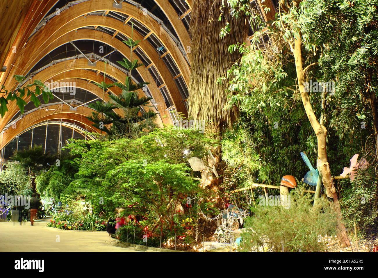 plant winter garden home design inspirations
