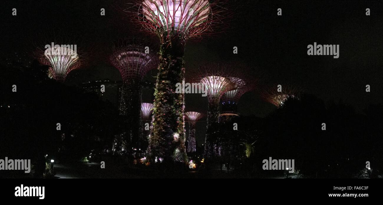 marina bay and garden by the bay singapore beauty of asia - Garden By The Bay Fireworks