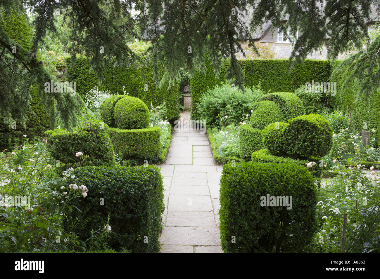Superb Topiary Box Part - 14: Stock Photo - The White Garden With Yew Hedges And Box Topiary At Hidcote,  Gloucestershire, In June
