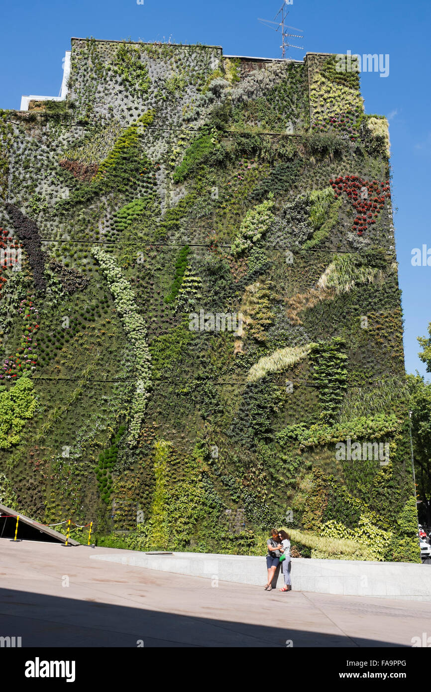 Awesome Living Garden Wall Outside Caixa Forum Madrid Spain   Stock Photo