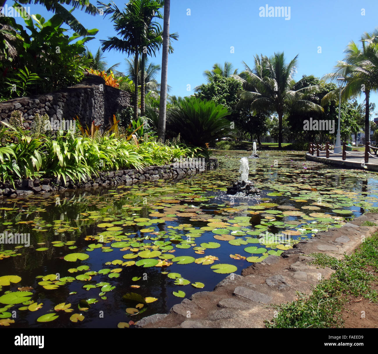 Ornamental fish pond of jardins de pa 39 ofa 39 i garden of for Ornamental pond