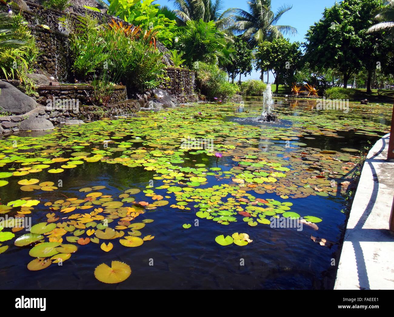 Ornamental fish pond of jardins de pa 39 ofa 39 i garden of for Ornamental pond fish inc