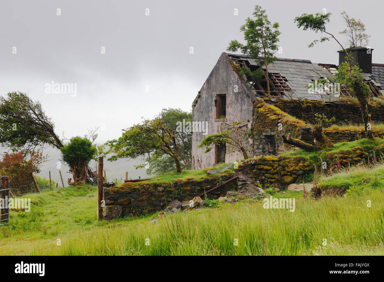 Old abandoned cottage in the mountains of iveragh for Cottage in the mountains
