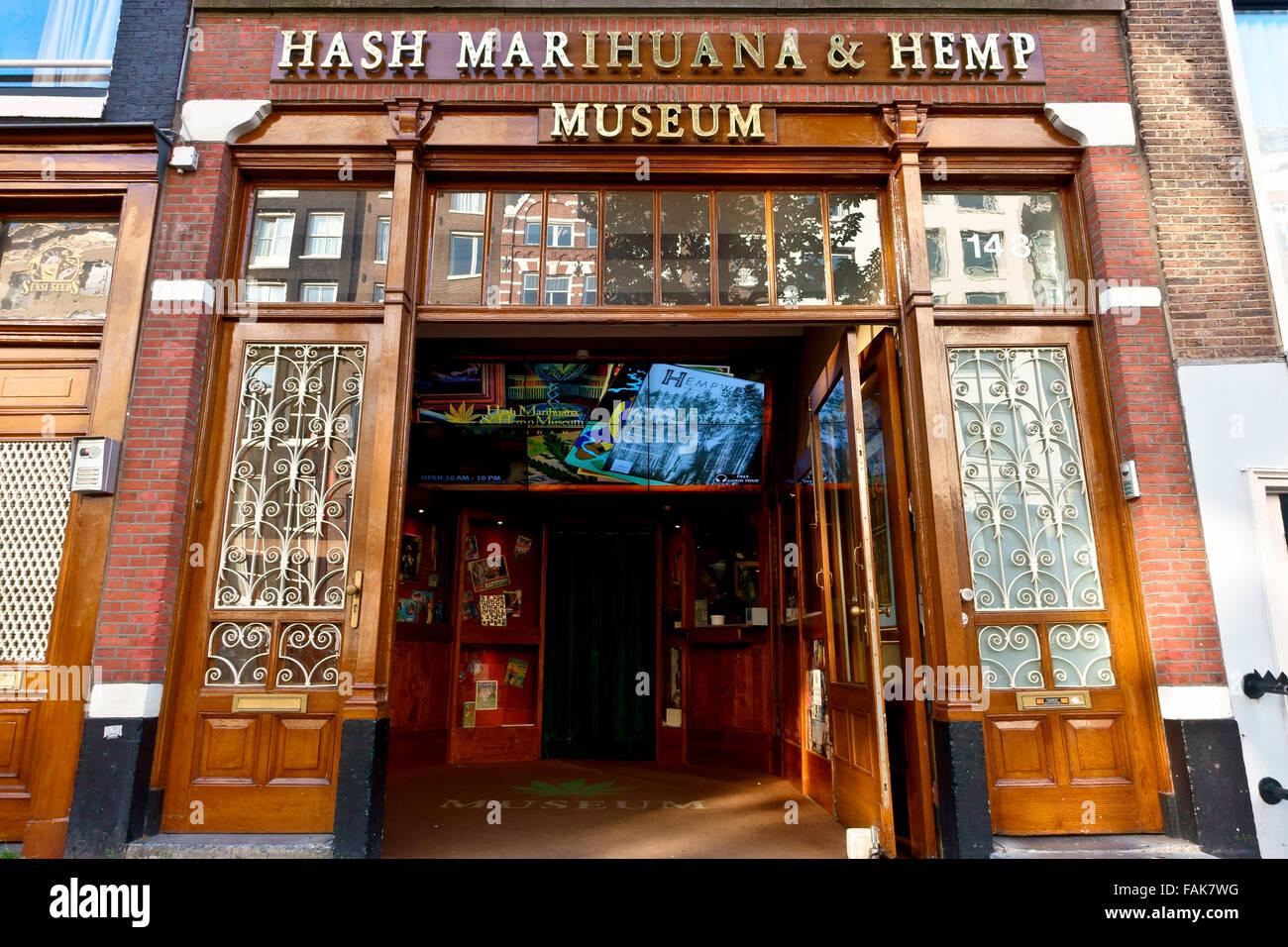 hash marijuana hemp museum light district amsterdam stock photo royalty free