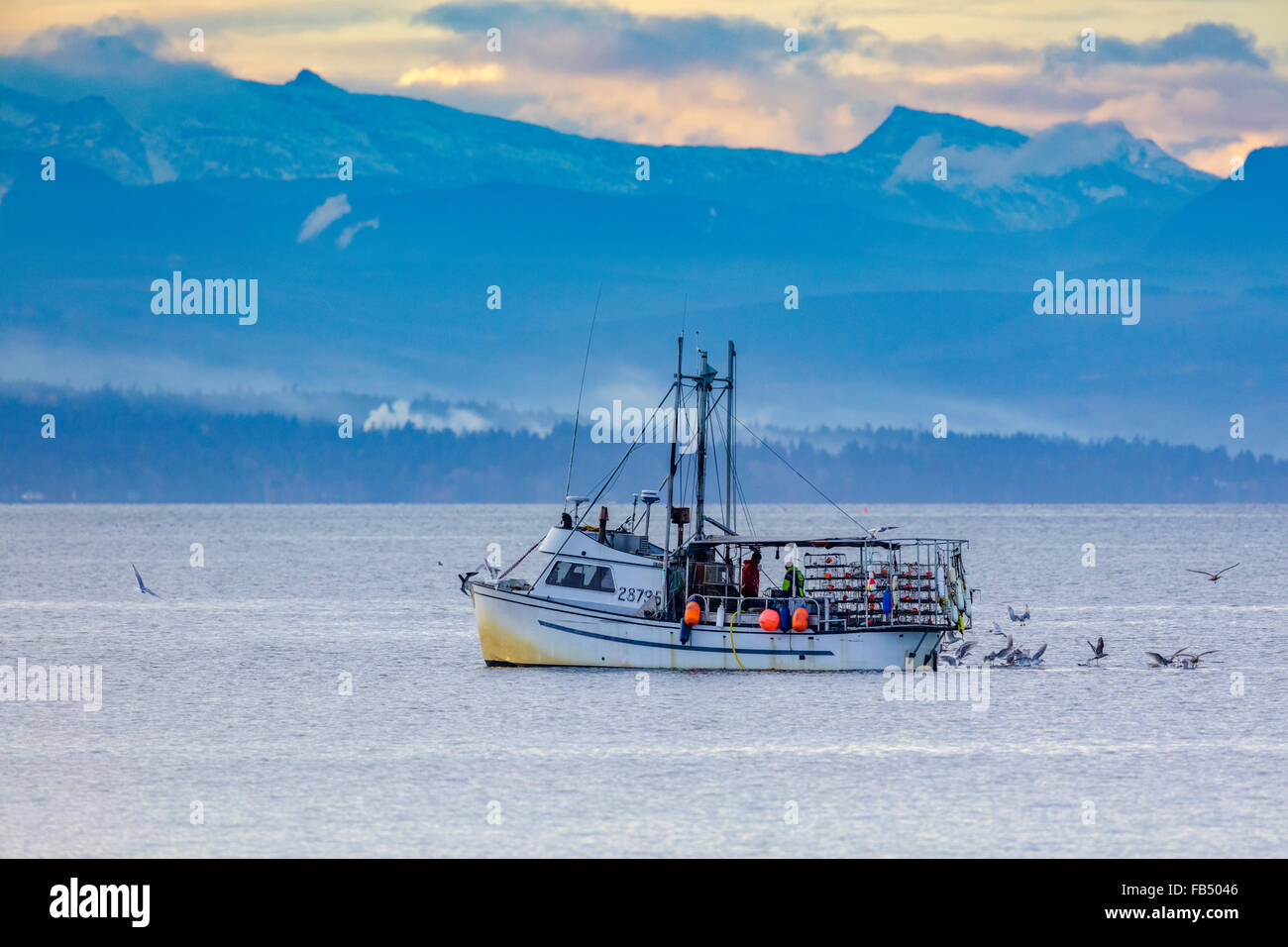 Used fishing boats for sale in british columbia taconic for Vancouver island fishing