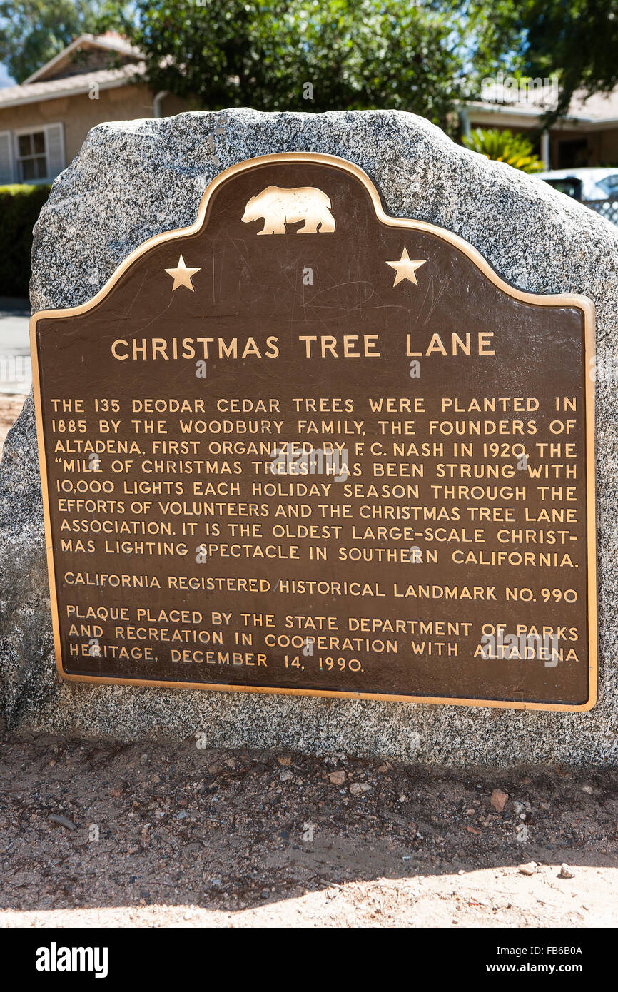Christmas Tree Lane The 135 Deodar Cedar Trees Were Planted In ...