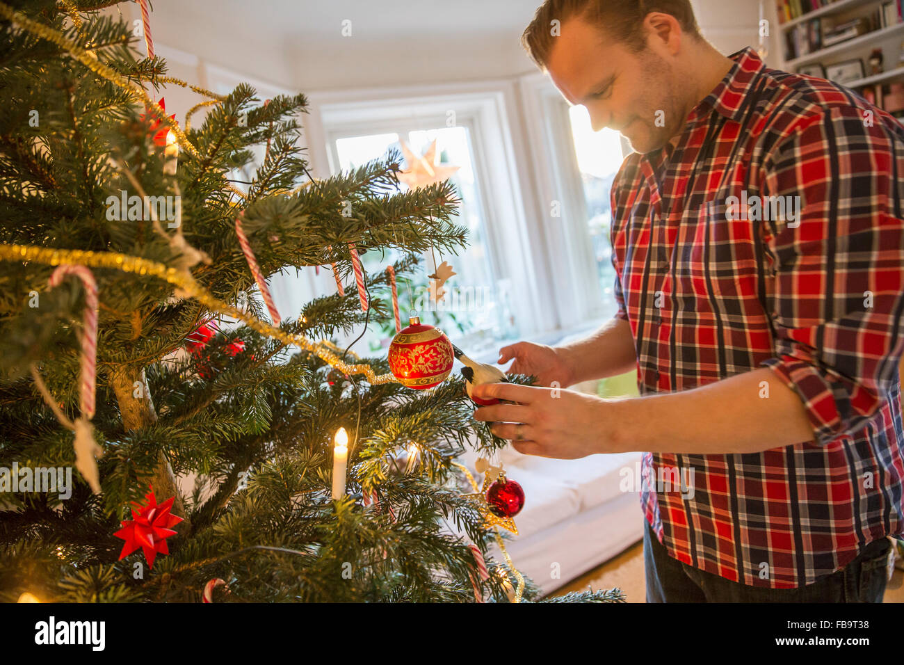 Sweden, Man Decorating Christmas Tree At Home Stock Photo