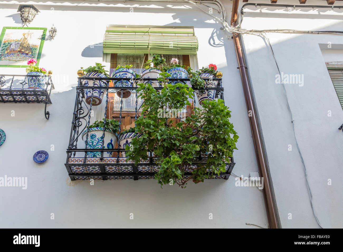 Flowers and plants on a typical spanish balcony in the for Balcony in spanish