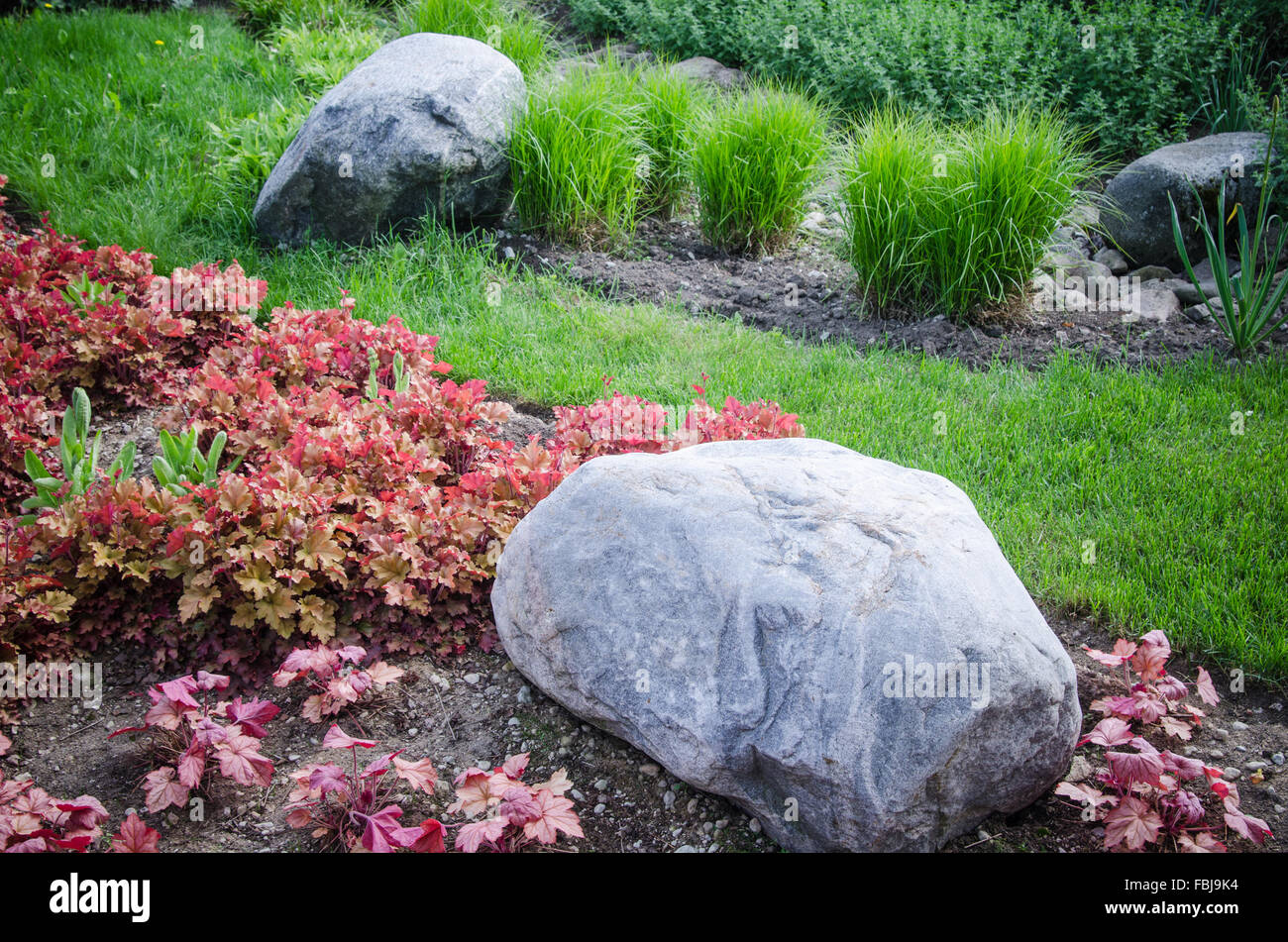 Decorative Flower Bed In A Garden With Rocks And Plants, Close Up