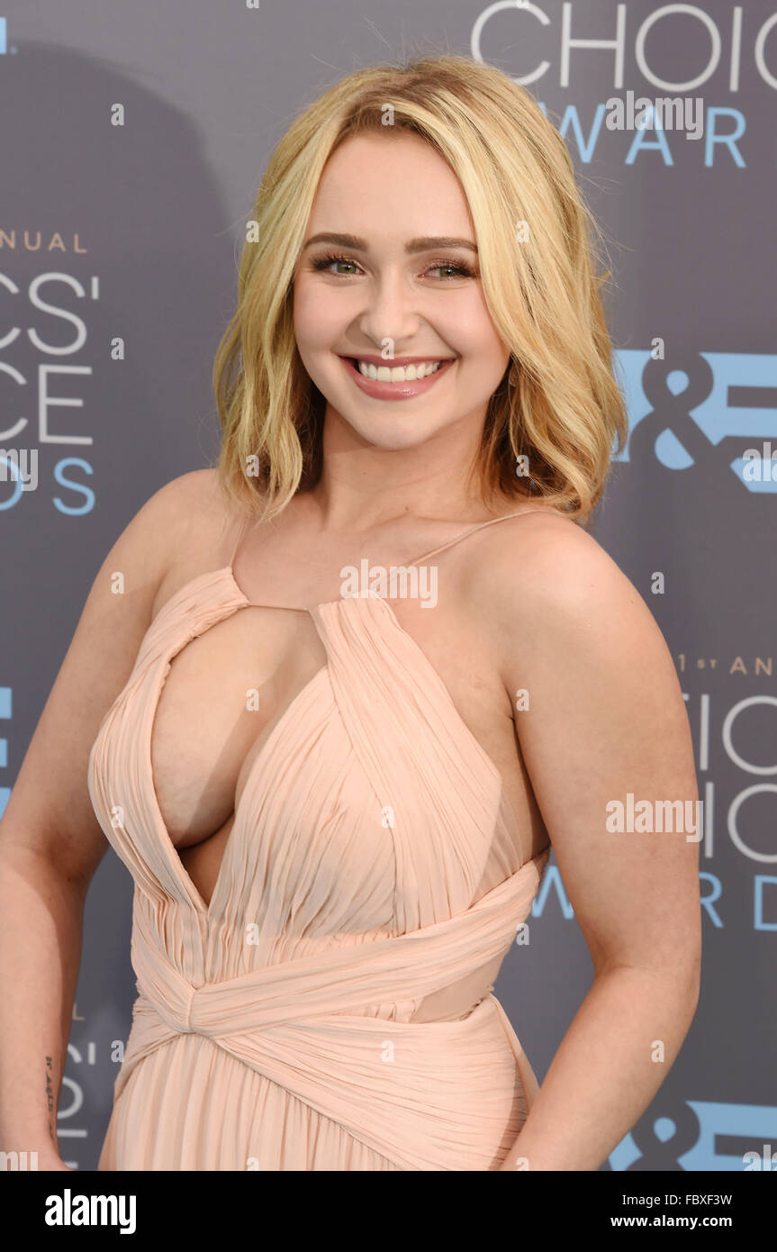 Hayden panettiere the architect - 1 6