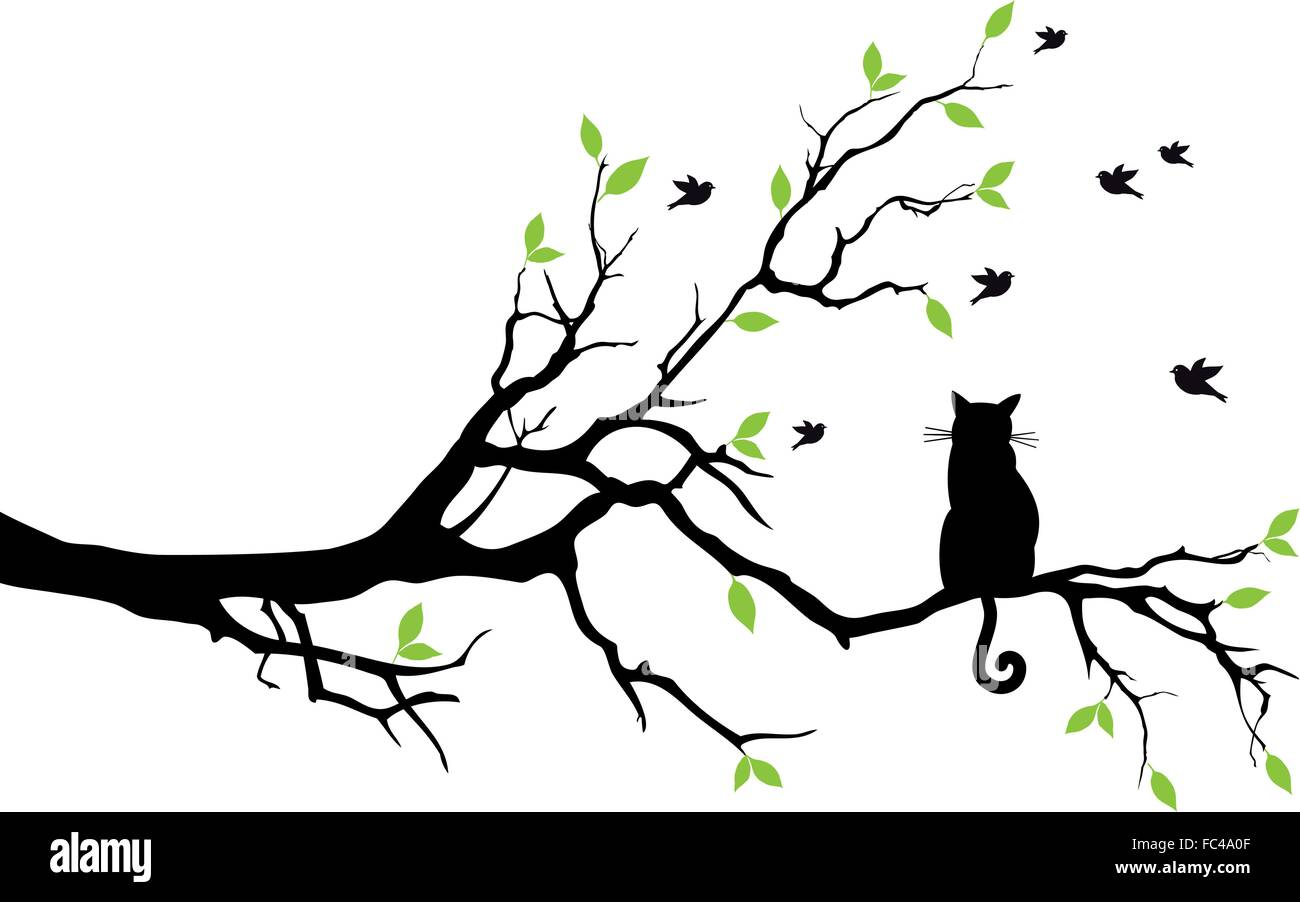 black cat sitting on tree branch watching birds vector