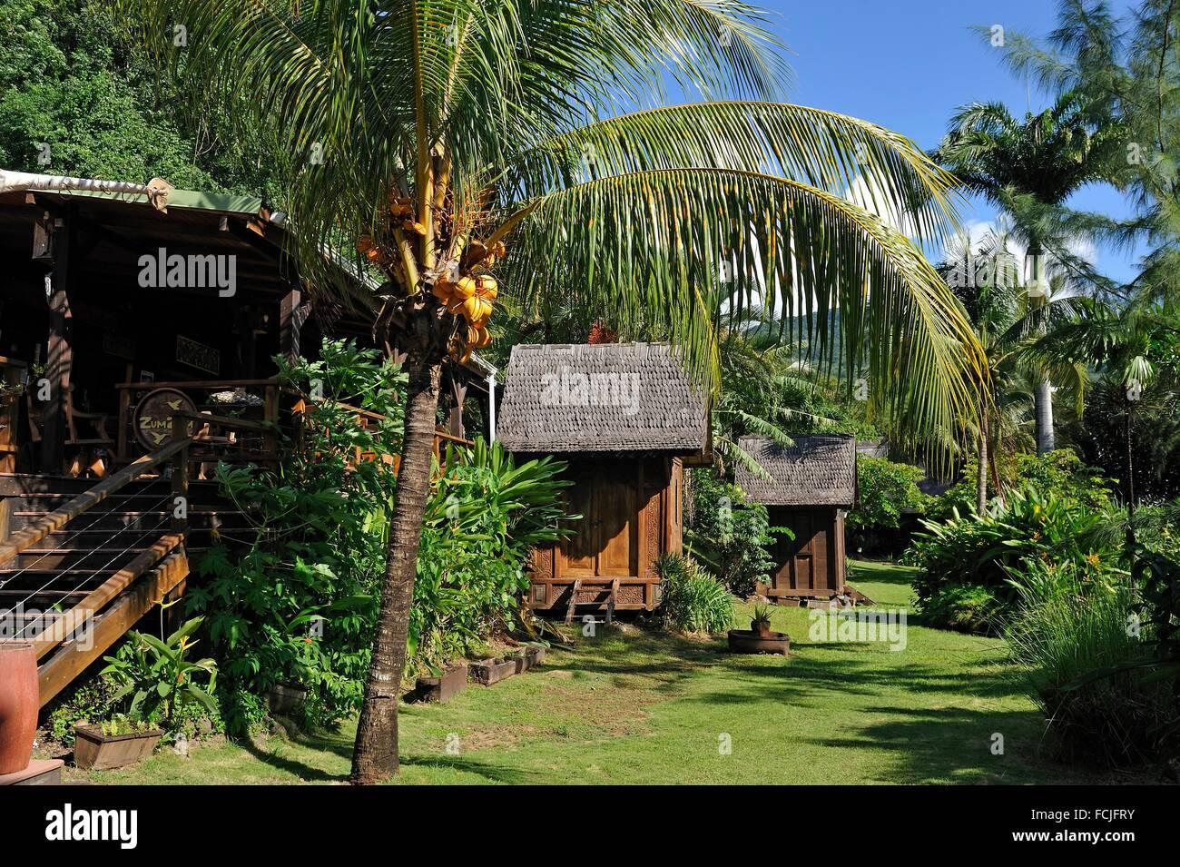 Tainos cottages charming hotel deshaies basse terre - Jardin botanique guadeloupe basse terre ...