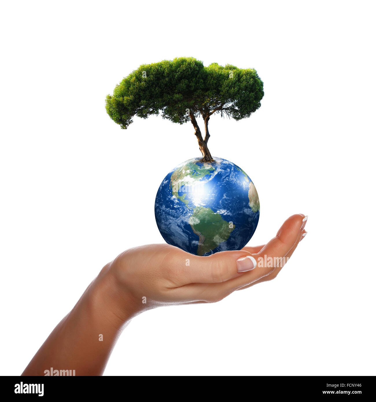 Hands our planet earth and the tree a symbol of environmental hands our planet earth and the tree a symbol of environmental protection biocorpaavc