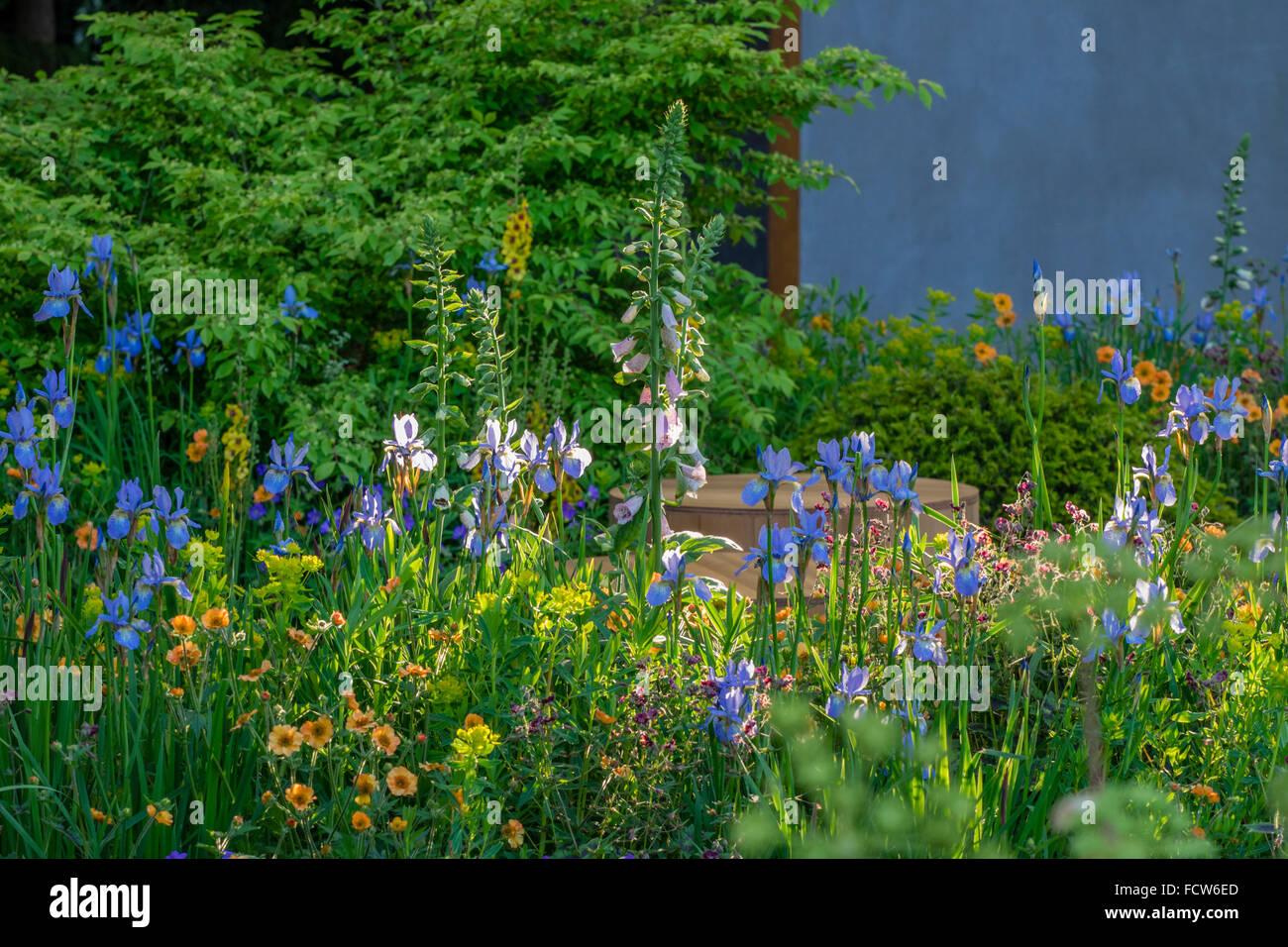 White apron homebase - The Homebase Garden Urban Retreat Designed By Adam Frost Rhs Chelsea Flower Show 2015
