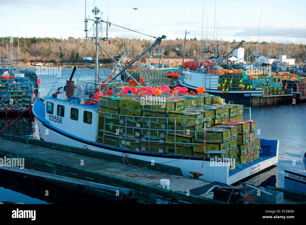 Lobster Traps For Sale In Rhode Island
