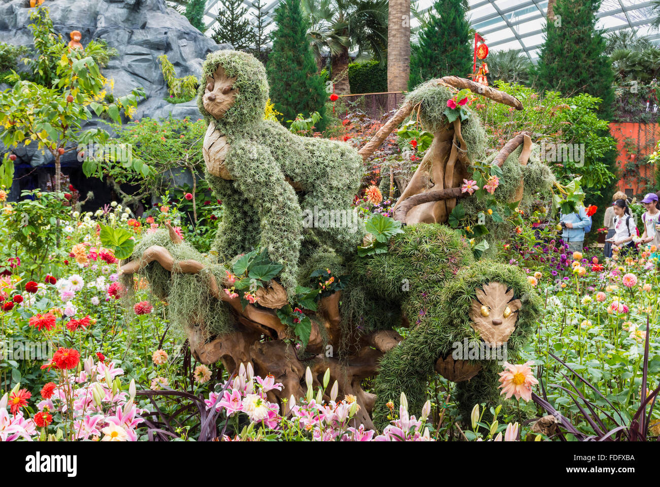 Monkey Shaped Topiary Art Celebrating The Chinese New Year Of The