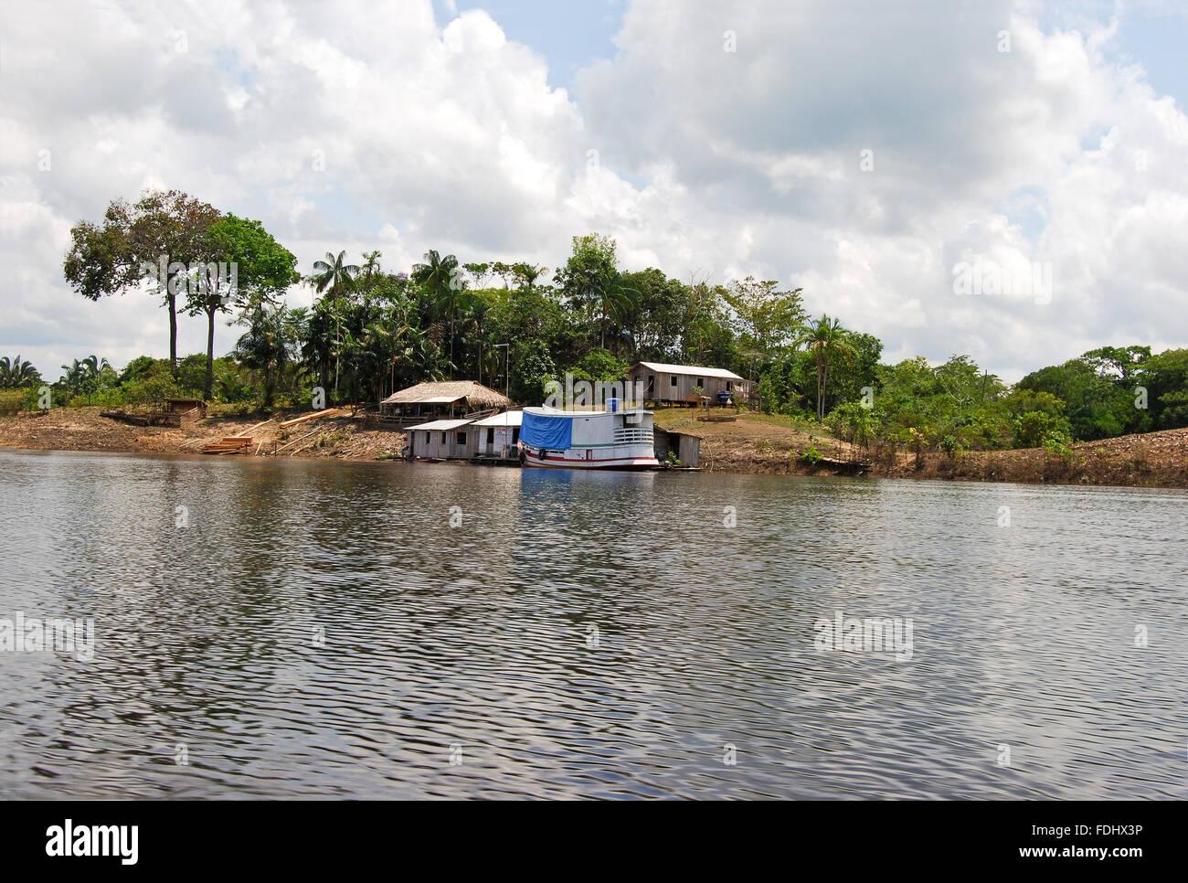 Landscapes along the south bank - Amazon Rainforest Landscape Along The Shore Of Amazon River Near Manaus Brazil South America
