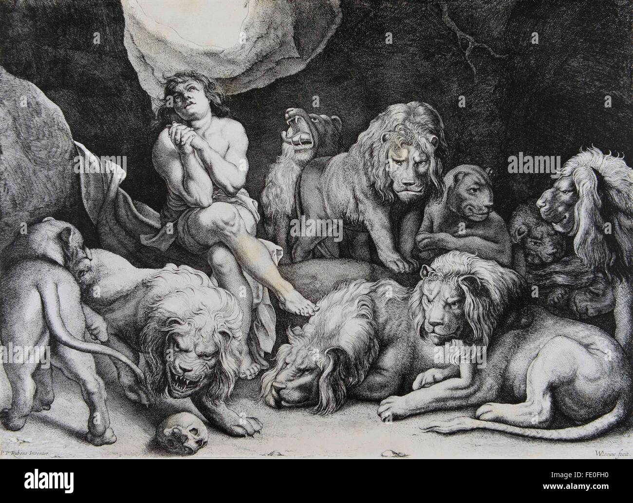 daniel in the lions den etching by w p leeuw from a painting by p p rubens