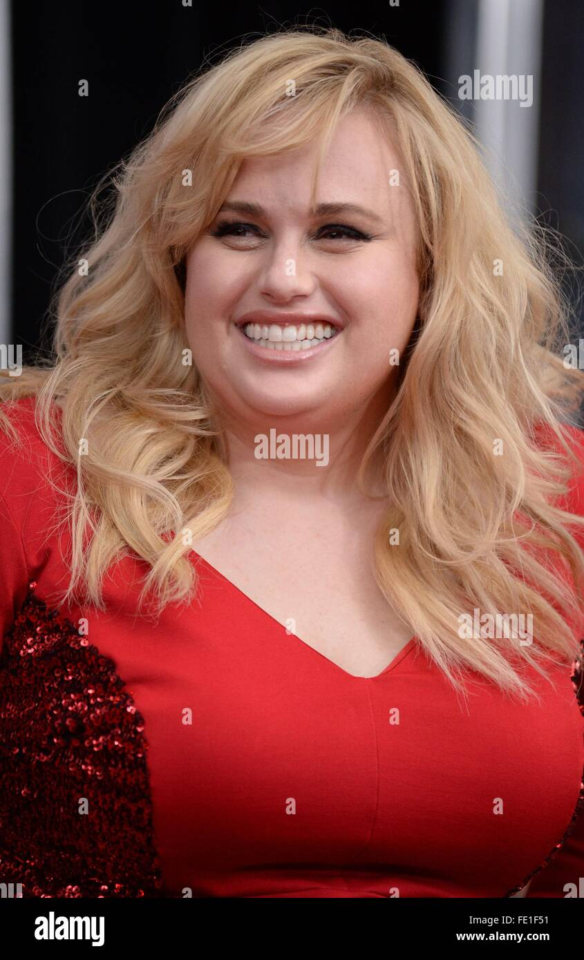 Rebel Wilson At Arrivals For How To Be Single Premiere, Nyu Skirball Center  Of Performing Arts, New York, Ny February 3, 2016