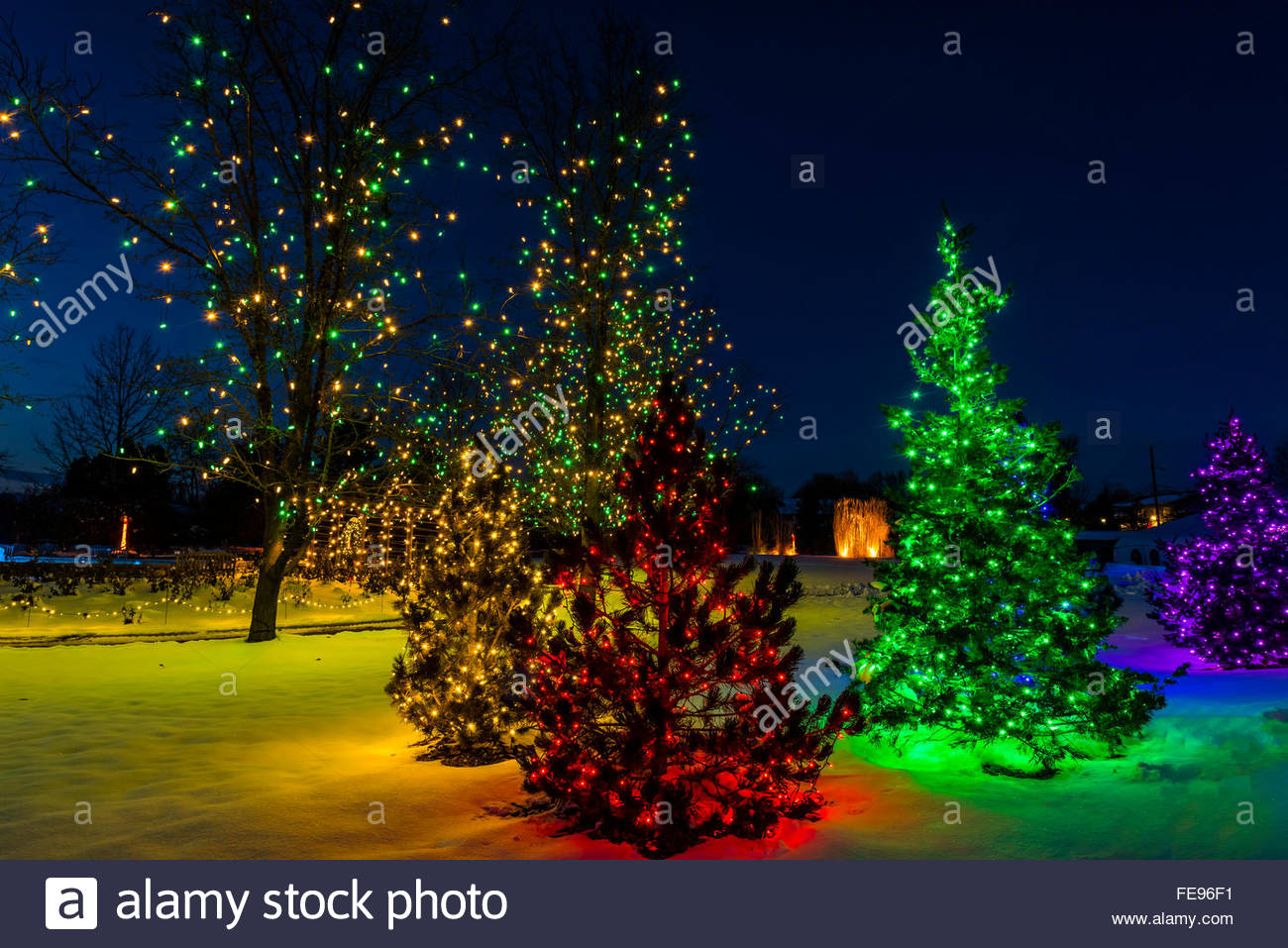 A Hudson Christmas Holiday Light Show At Hudson Gardens Littleton Stock Photo Royalty Free