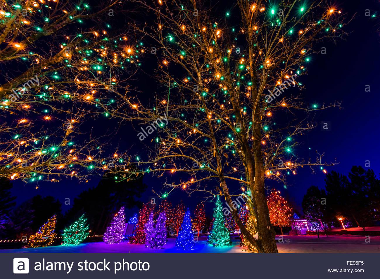 High Quality A Hudson Christmas (holiday Light Show At Hudson Gardens), Littleton,  Colorado USA