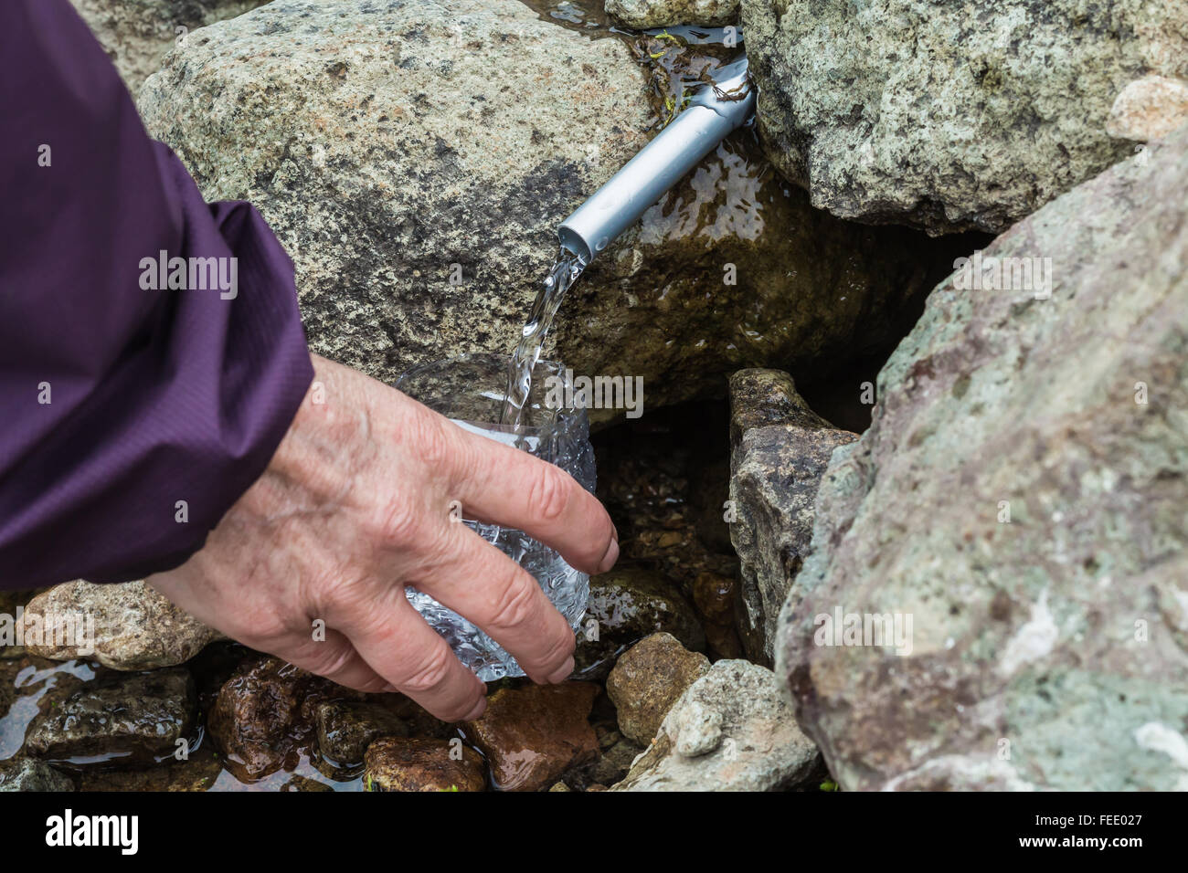 Ferrule from tent repair kit directs water from spring for hiker Mount Baker-Snoqualmie National Forest Washington State USA & Ferrule from tent repair kit directs water from spring for hiker ...