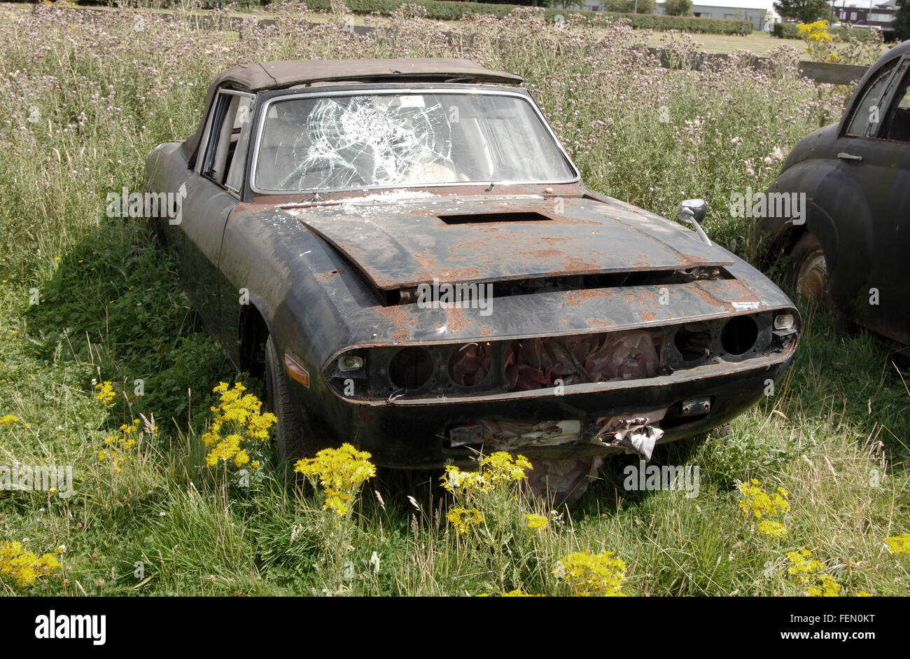 Abandoned Classic Cars Rotting In A Field Triumph Stag And Stock