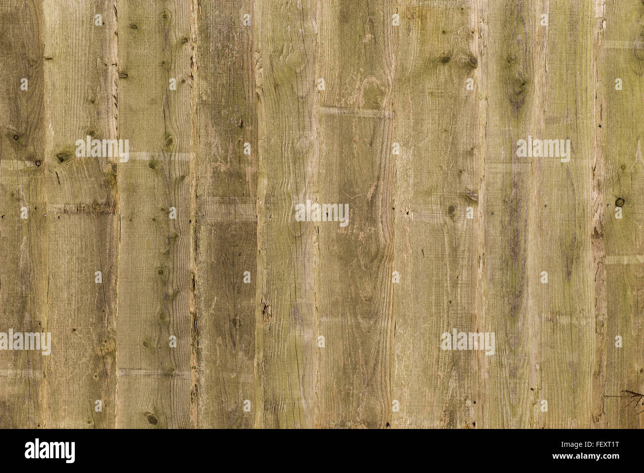 Wooden fence panels stock photos wooden fence panels stock weathered wooden fence panels background texture boards wall stock image baanklon Images
