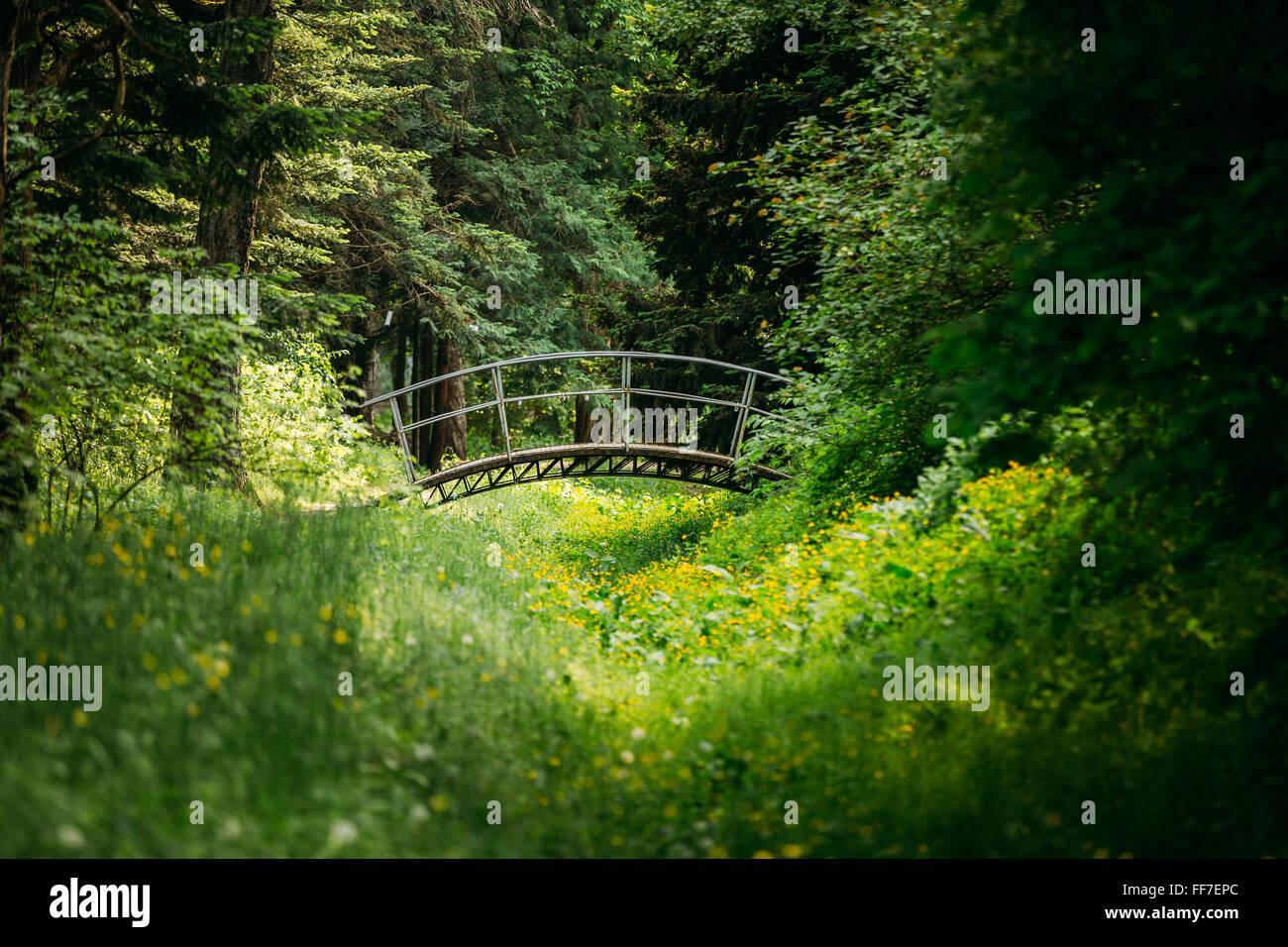 Old small decorative bridge in summer garden park forest Stock Photo ...