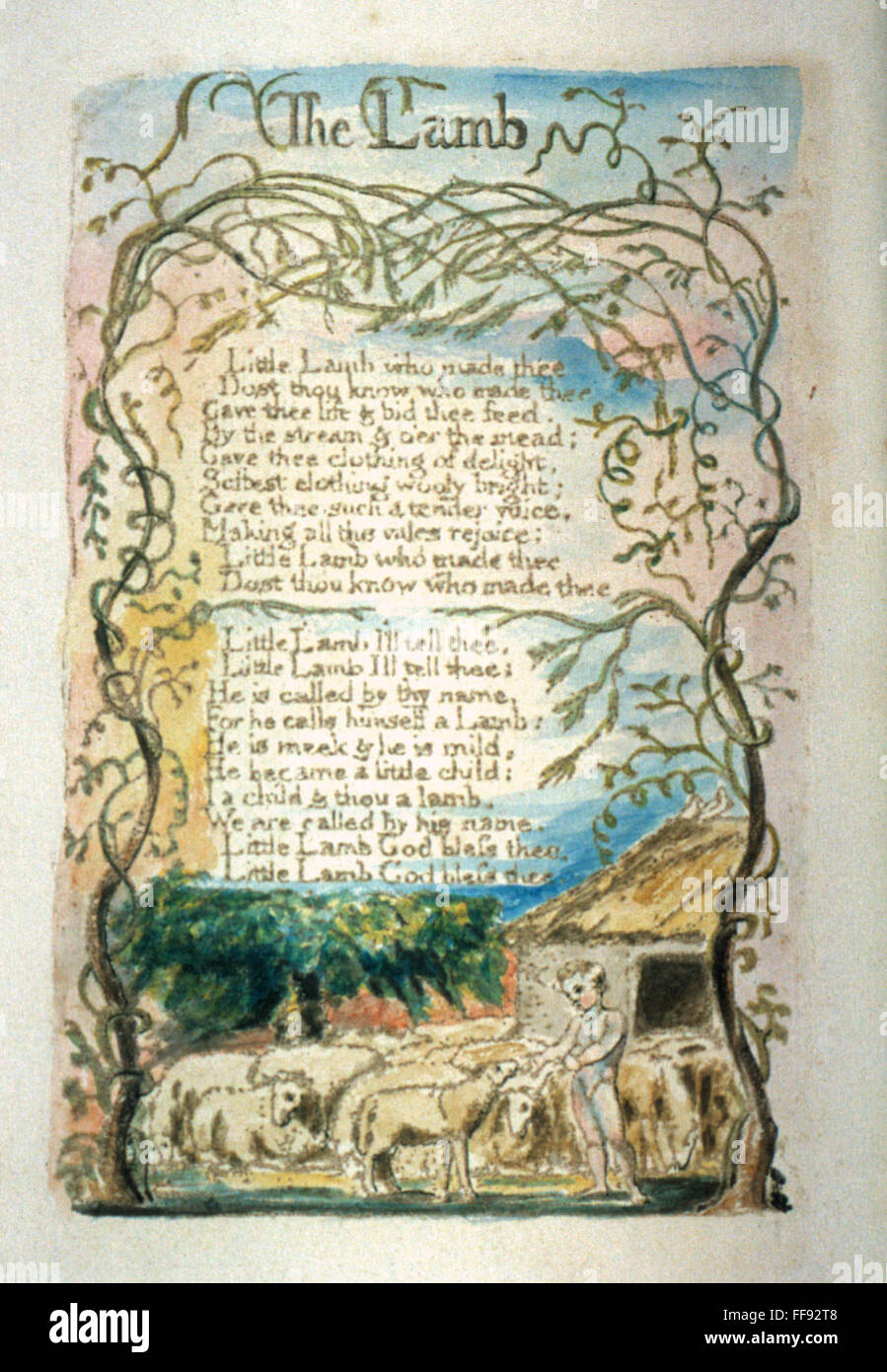 william blake-the tyger essay