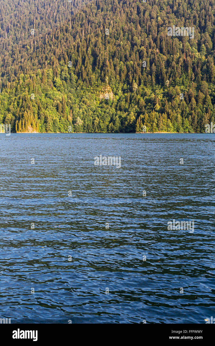 Mountain lake Ritsa, Abkhazia, Georgia Stock Photo ...