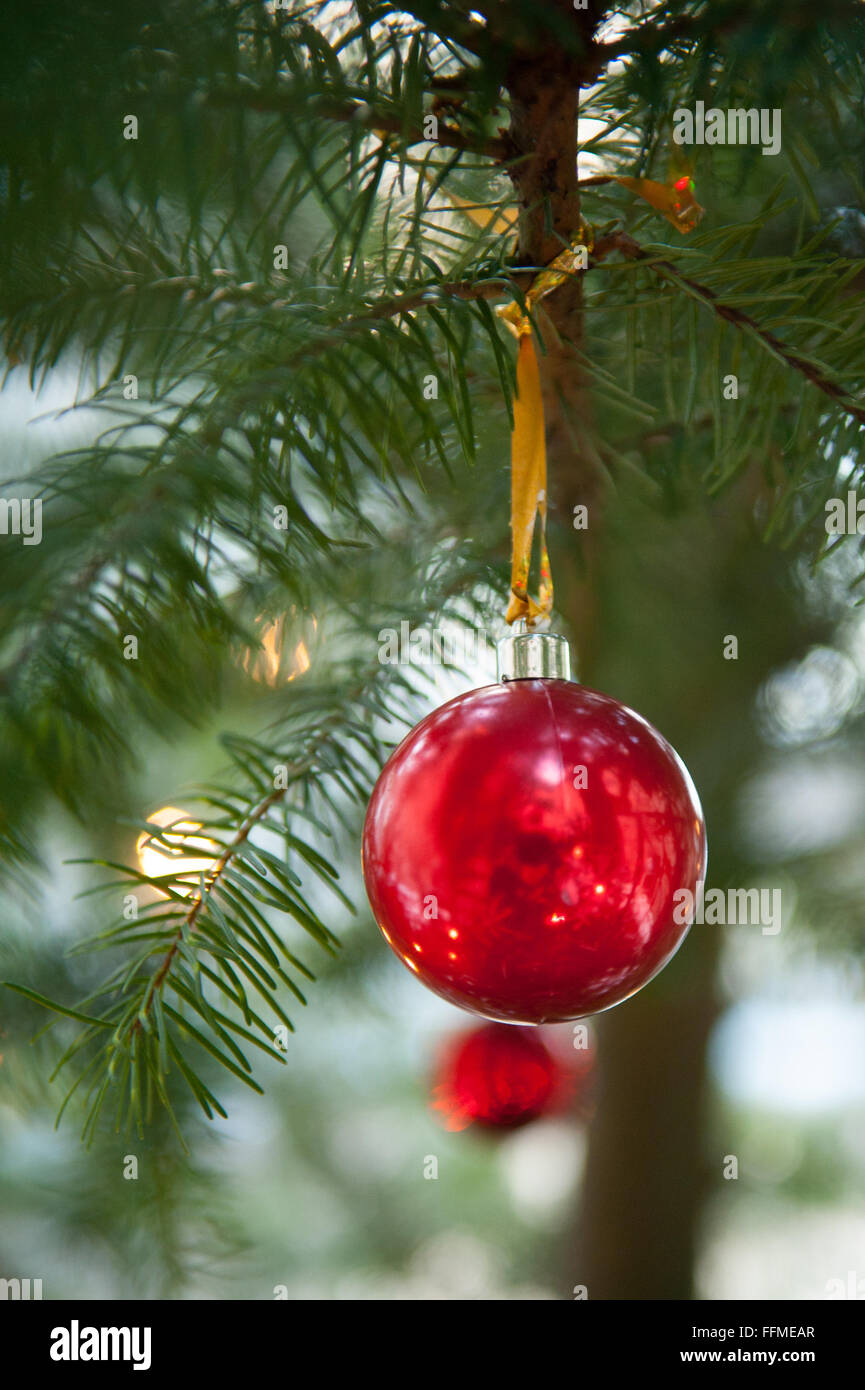 Red Baubles On Christmas Tree Outdoors