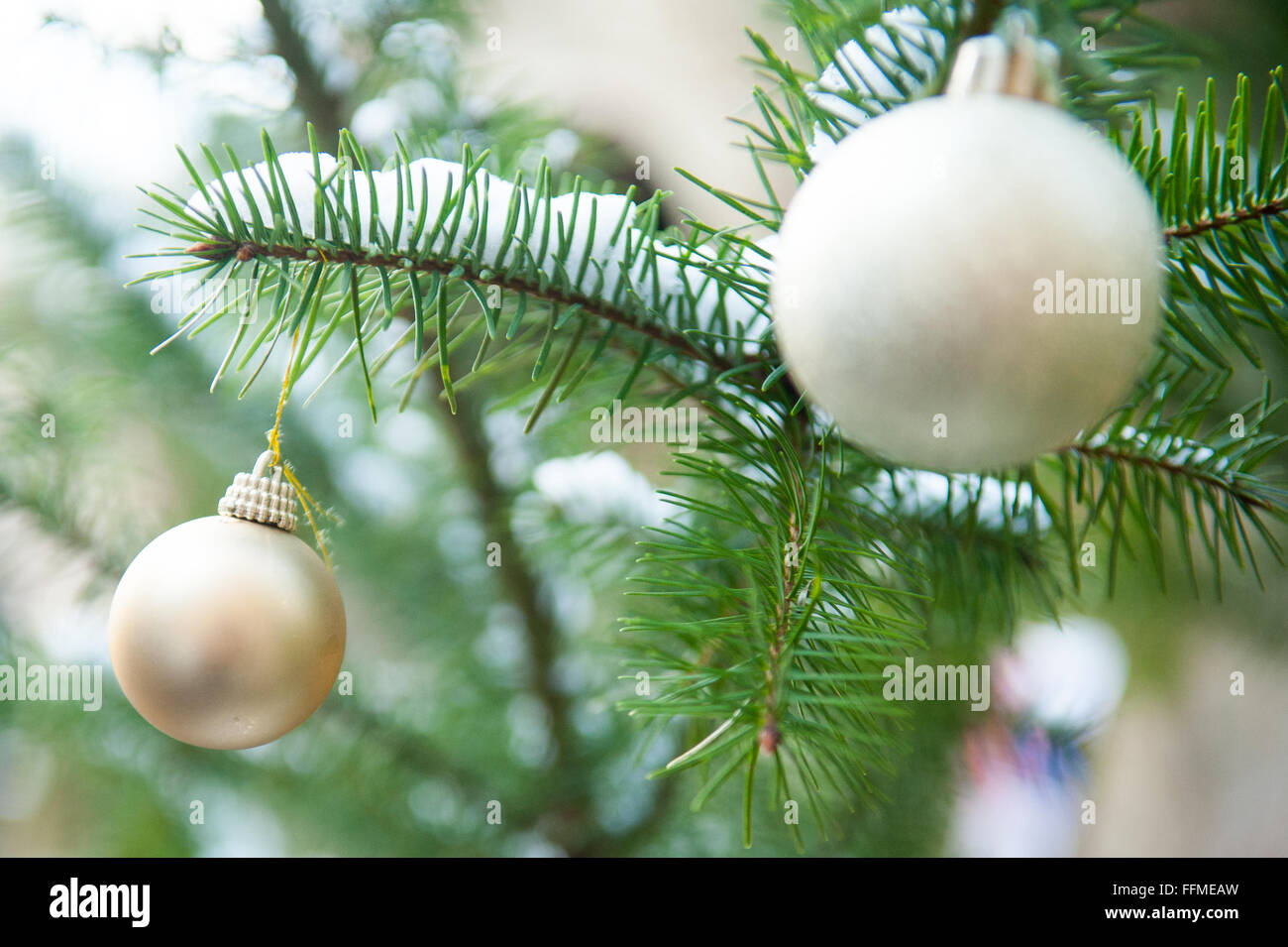Gold And Silver Baubles On Christmas Tree Outdoors
