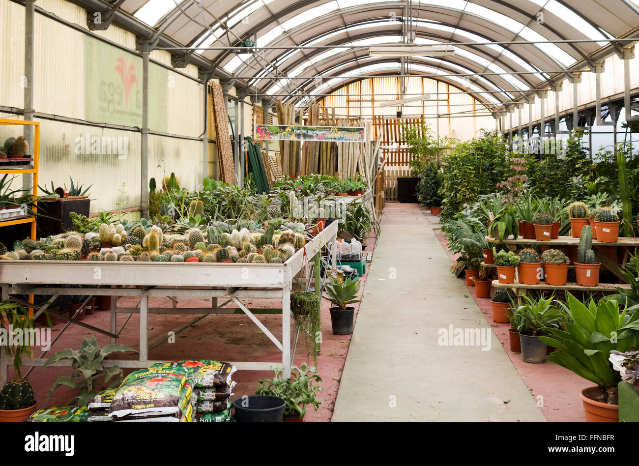Greenhouse in Garden centre retail plant nursery offering plants Stock