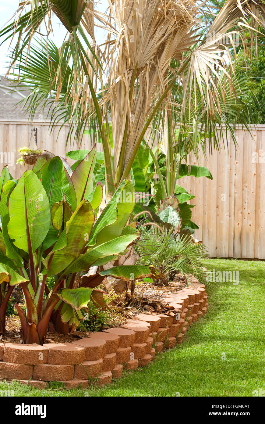 Flower bed in residential backyard with palm and banana trees with