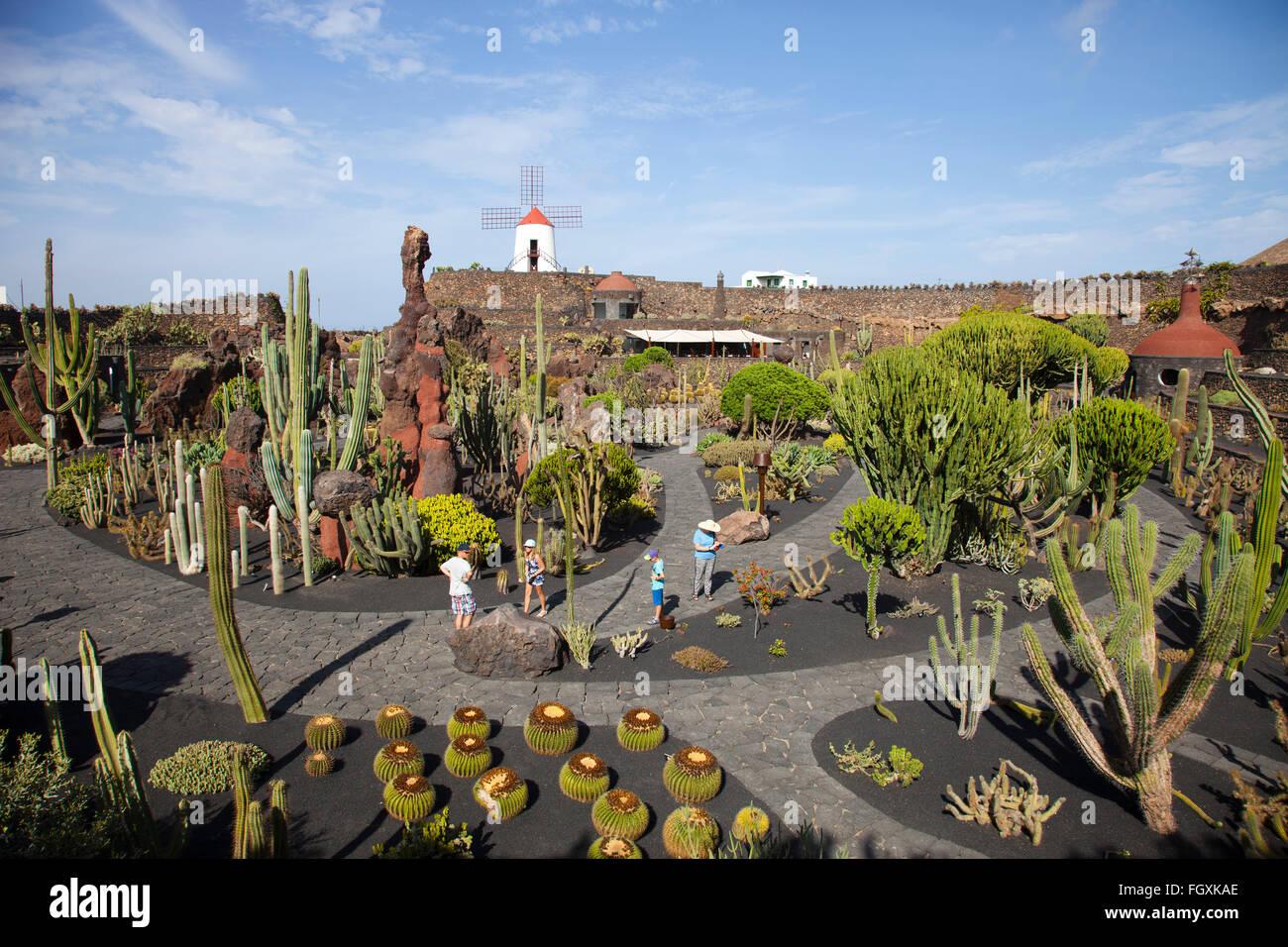 Jardin de cactus by artist cesar manrique guatiza area for Jardineras de cactus
