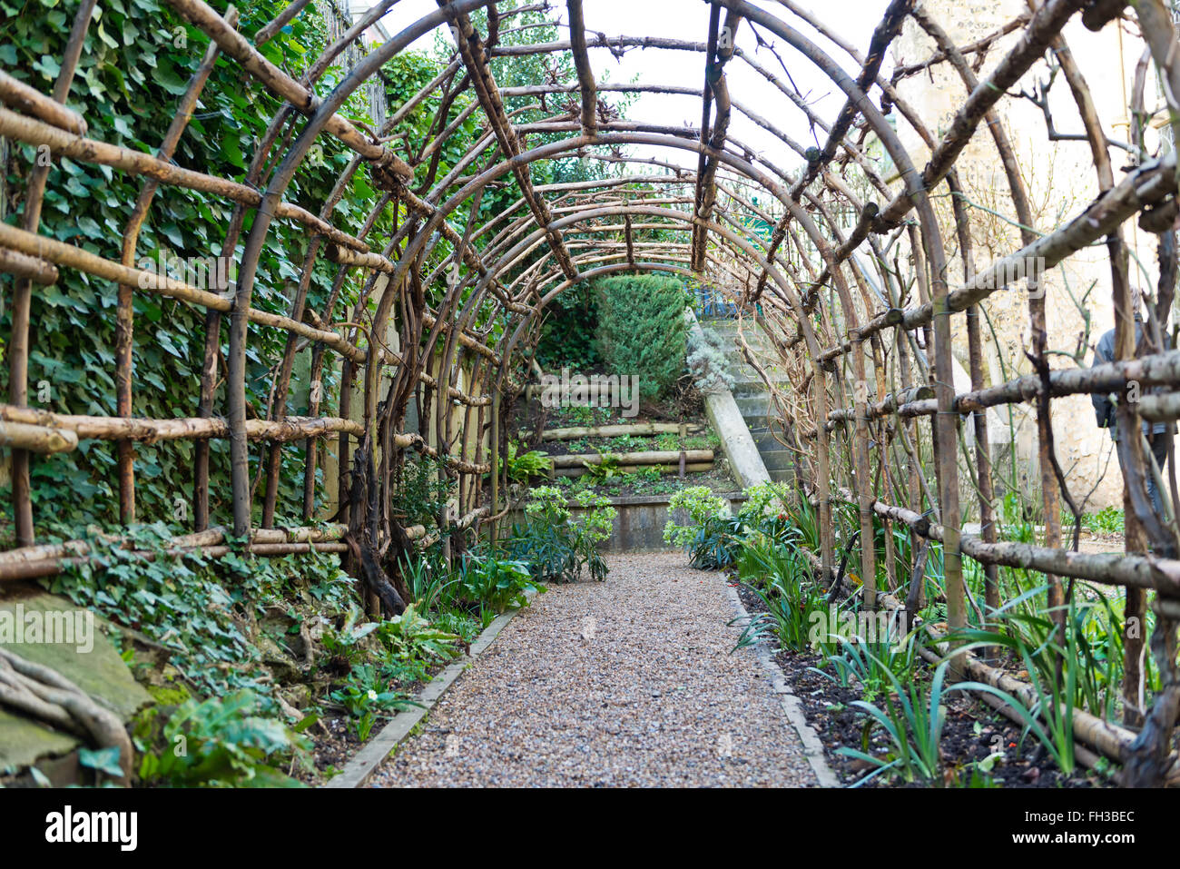 Amazing Seedlings Beside Stone Path Of Long Wooden Garden Trellis Outside Of The  Medieval Era Winchester Castle In The United Kingdom