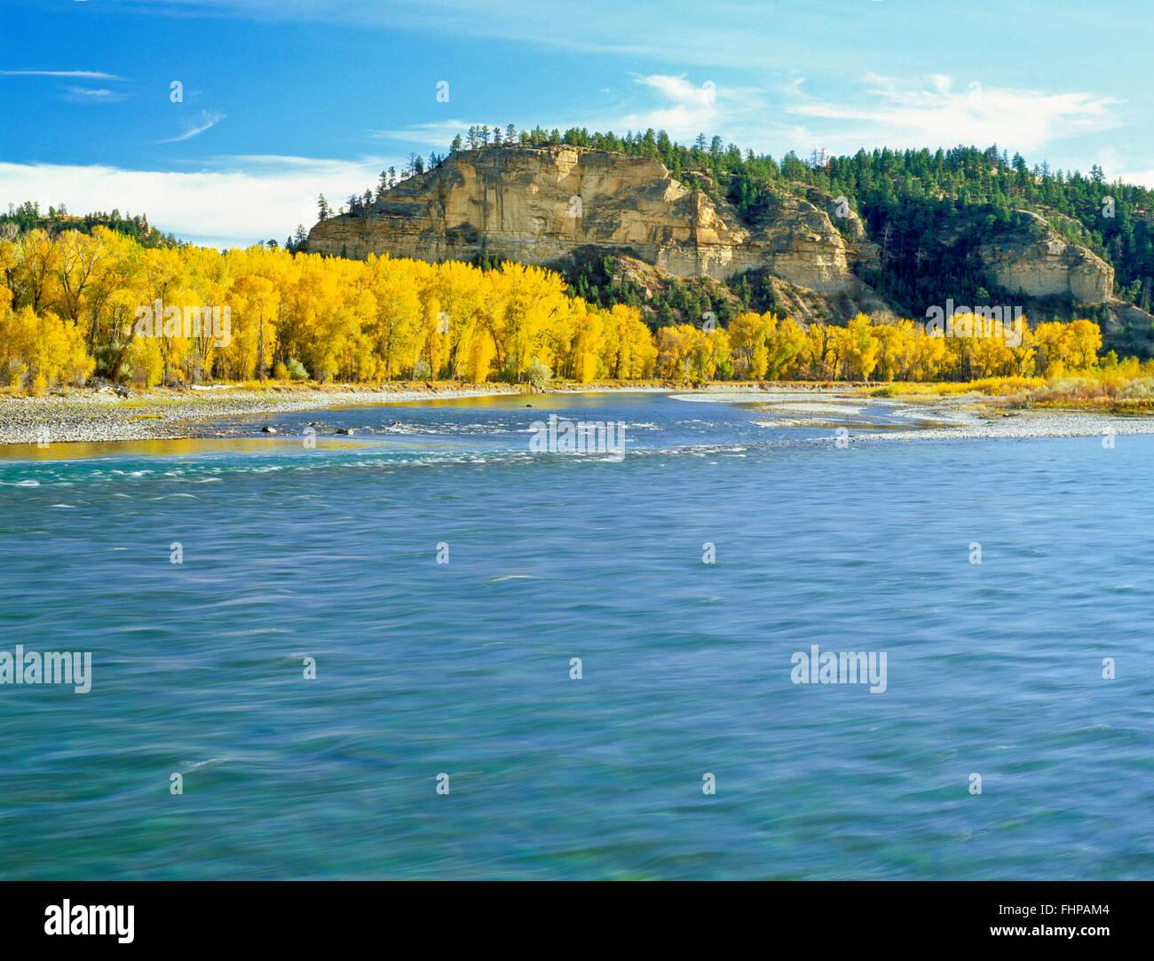 fall colors along the yellowstone river near park city montana
