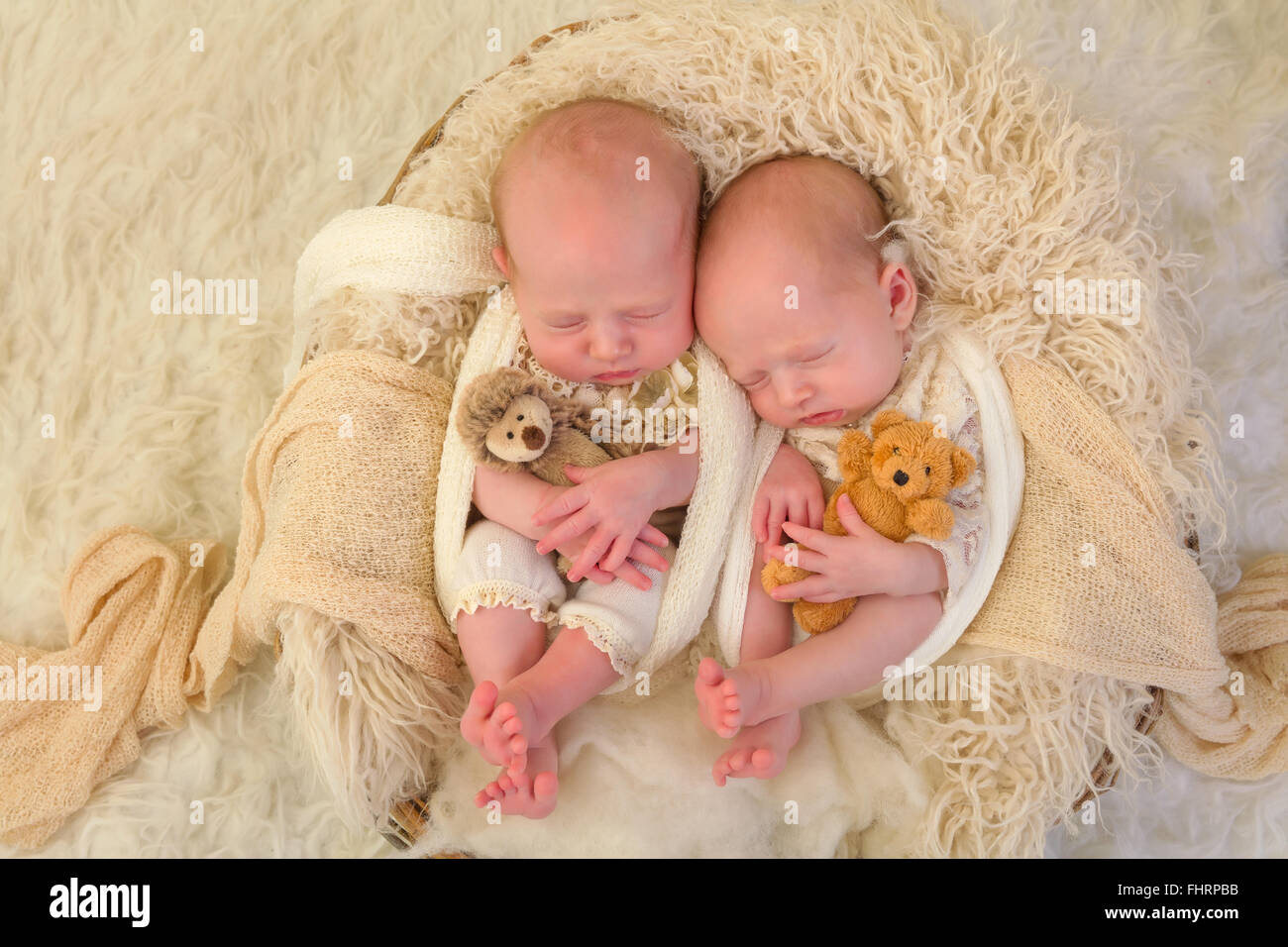 Adorable newborn identical twin baby girls sleeping in a ...