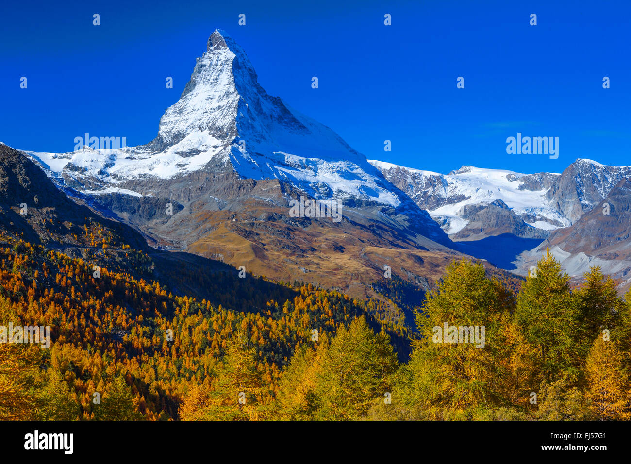 matterhorn and larches in autumn switzerland valais stock photo