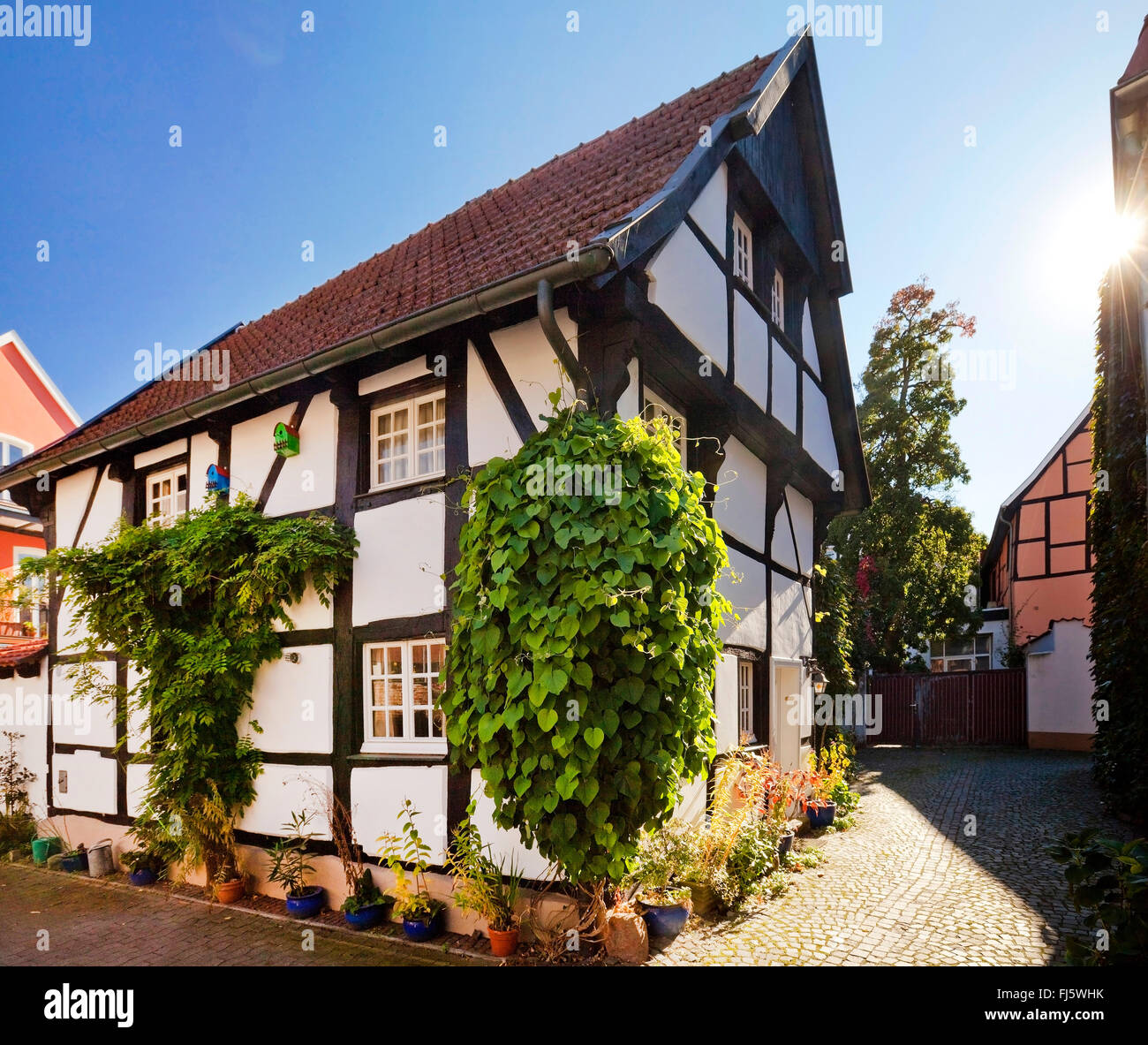 half timbered house in the old city germany north rhine westphalia stock photo royalty free. Black Bedroom Furniture Sets. Home Design Ideas