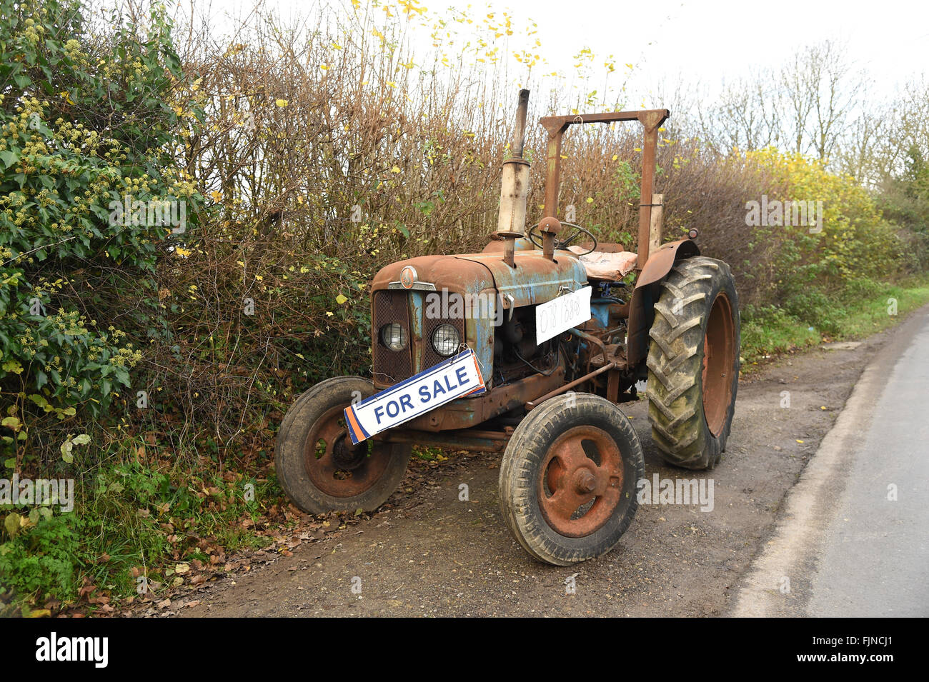 Kubota tractors for sale in kentucky - Tractor For Sale Uk Stock Image